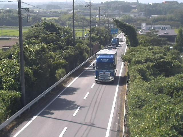 県道49号(柏野)映像